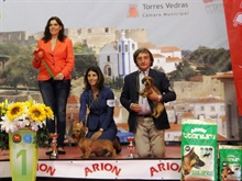 International Dog Show Torres Vedras (PT) 21.08.16