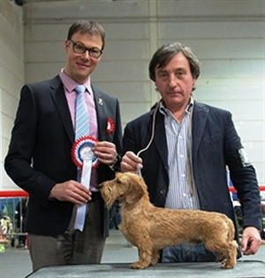 International Dog Show Luxembourg 30.03.13