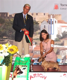 International Dog Show Torres Vedras (PT) 20.08.16