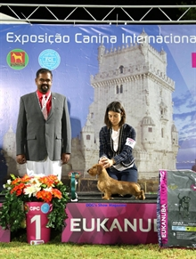 International Dog Show Lisboa Winner (PT) 15.07.16